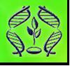 Logo de la recherche génétique du Belarus au service des victimes de Tchernobyl