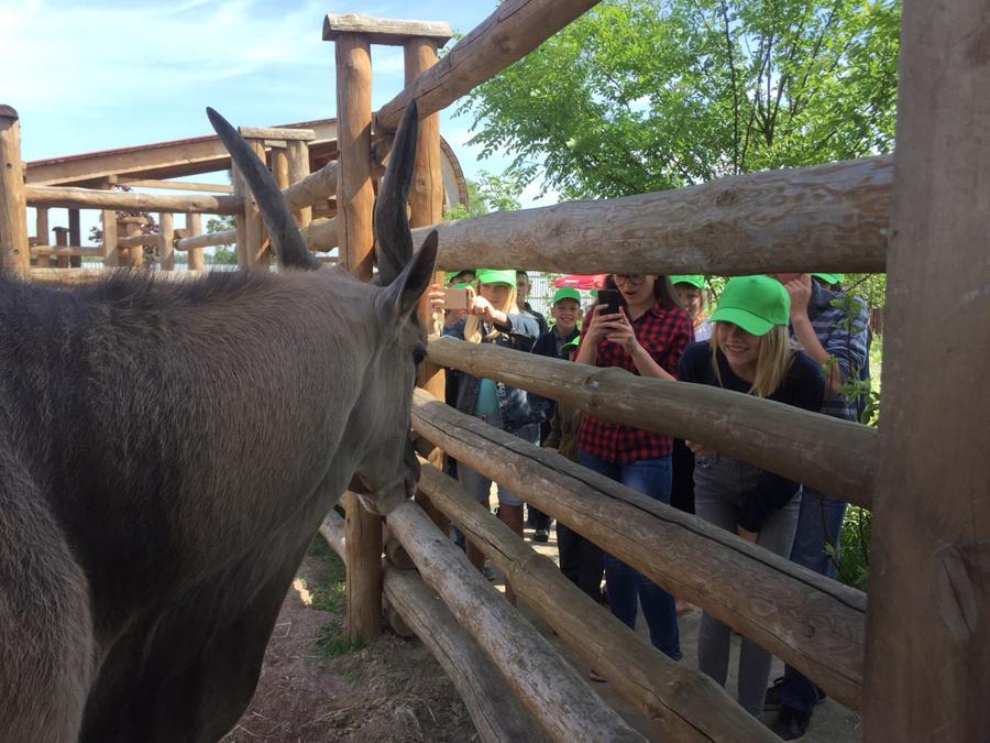 Photo au Zoo pour les enfants de Poliske