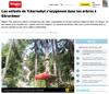 Lien vers l'article de presse de l'Alsace du 23 juillet 2018 : Les enfants de Tchernobyl s'oxygènent dans les arbres à Gérardmer