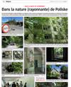 Lien vers l'article de presse de l'Alsace du 1er juillet  2018 : Dans la nature (rayonnante) de Poliske